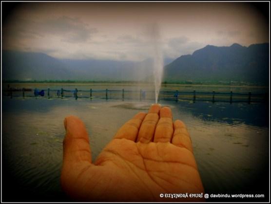 माझा अविष्कार .. :) दल लेक ,काश्मीर