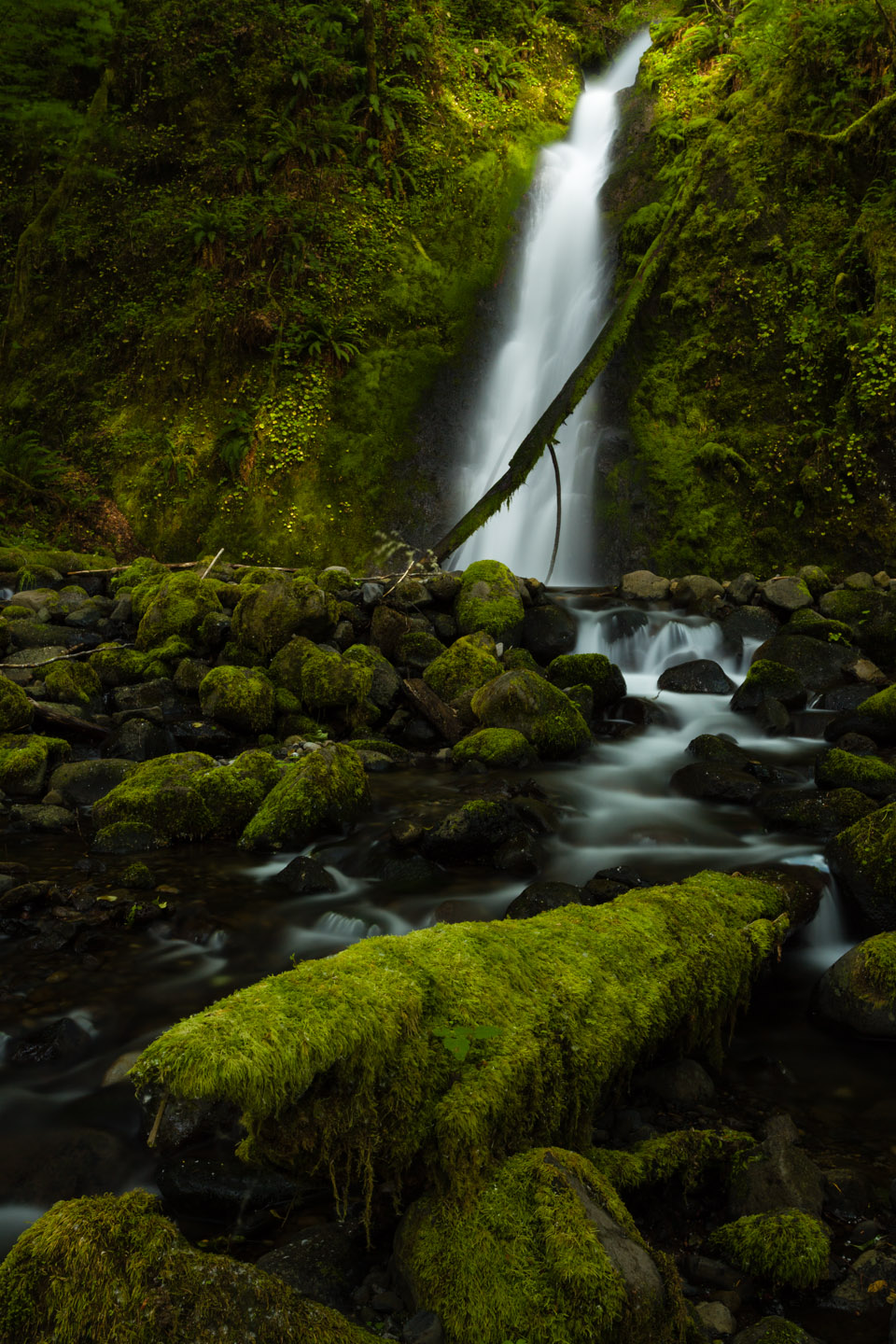 Columbia River Gorge is home to dozens of waterfalls, perfect for photography