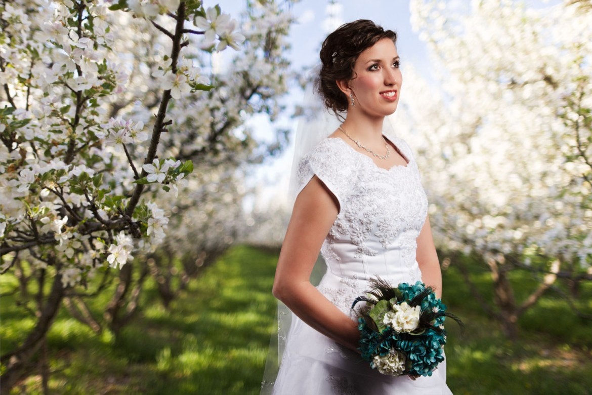 A bride surrounded by apple blossoms