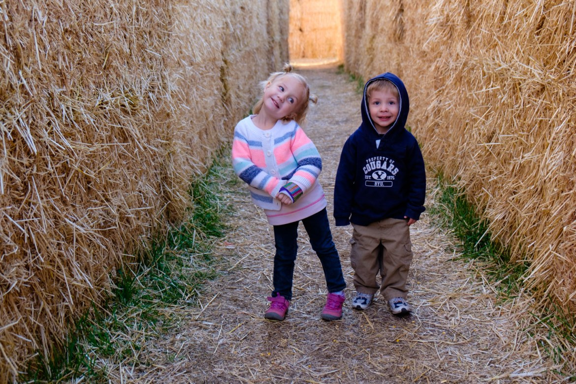 We got lost in the hay maze