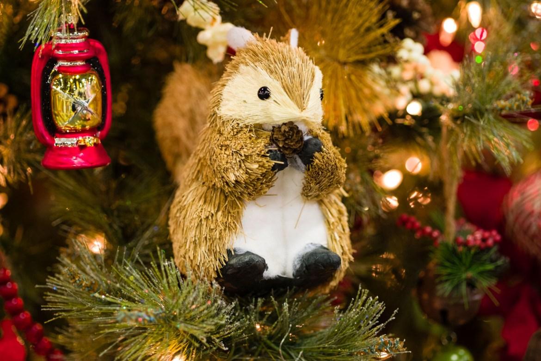 Christmas chipmunk