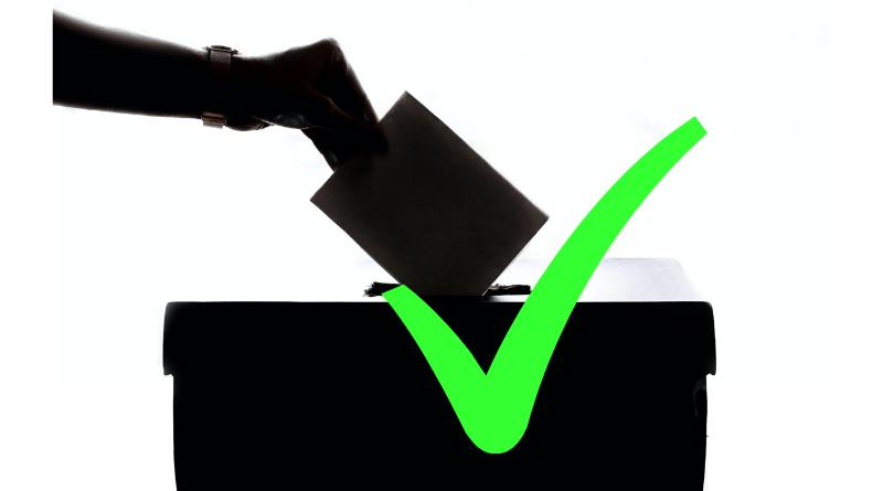 Referendum za predčasné voľby