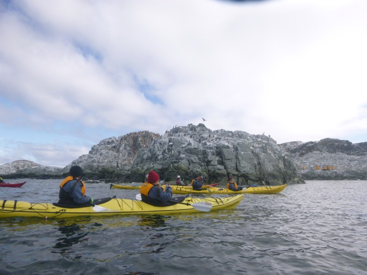 Kayaking around Hydrurga Rocks