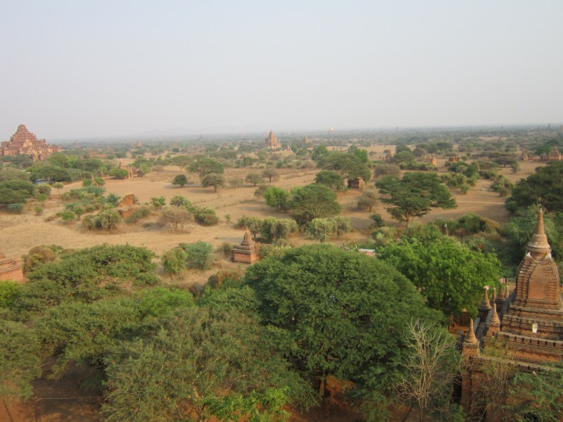 Looking out over the Temples of Bagan