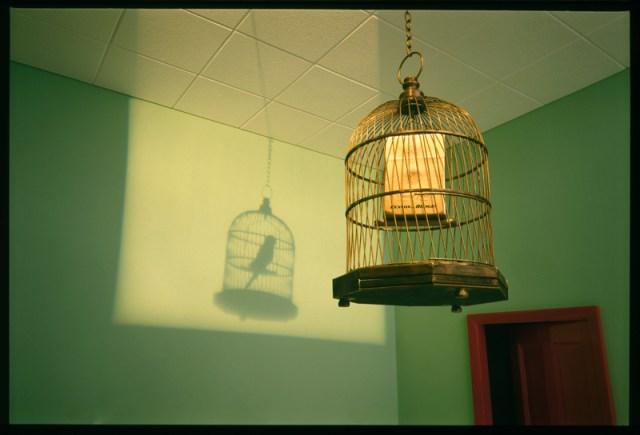 BH-bird-cage