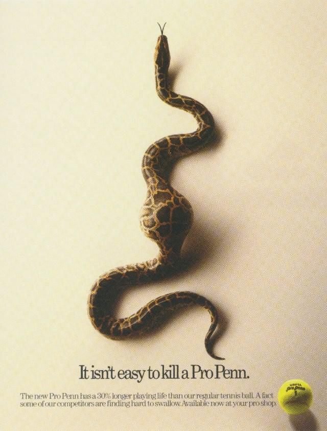 Fallon McElligott, Penn 'Snake'-01