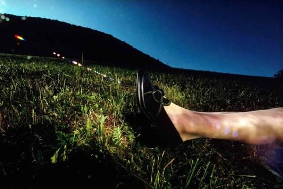 'Fields' Charles Jourdan, Guy Bourdain