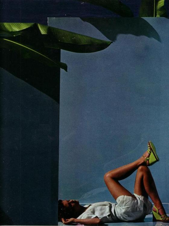 'Palm' Charles Jourdan, Guy Bourdain