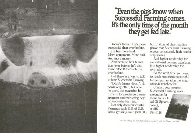 even-the-pigs-successful-farming-tom-mcelligott-fallon-mcelligott-01