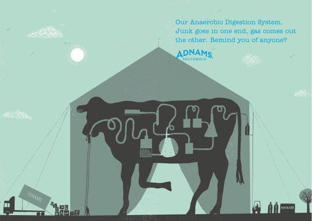Adnams Press ads DPS 'Cow'.jpg