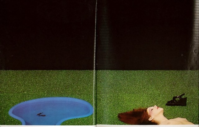 'Astroturf' Charles Jourdan, Guy Bourdain.jpg