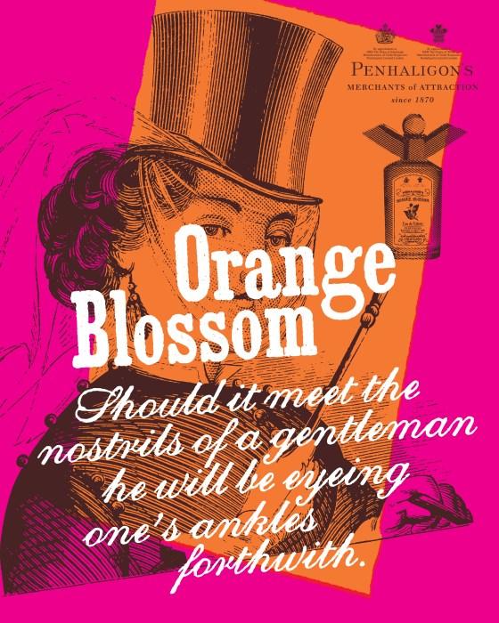 'Should It Meet - Orange Blossom' Penhaligon's, DHM*.jpg