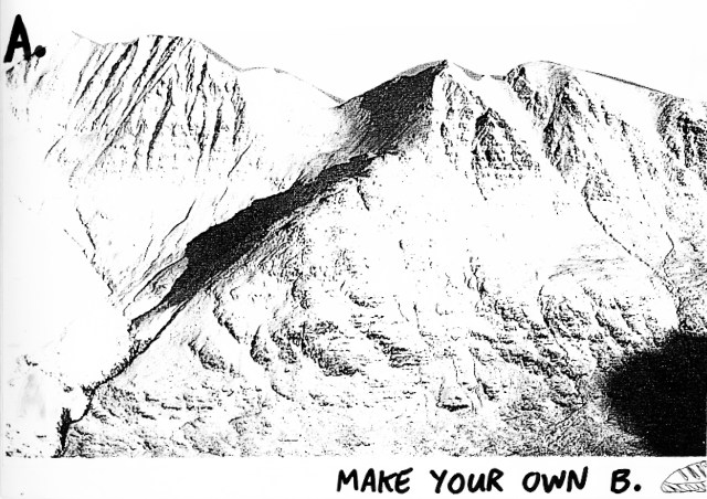 'A. Make Your Own B, (Rough)' Adidas, Trail, Leagas Delaney.jpg