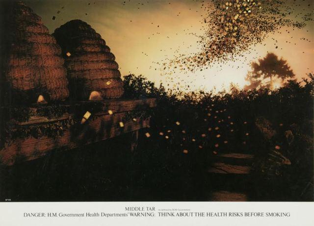 'Bees', Poster, B&H, Graham Fink, CDP.jpg