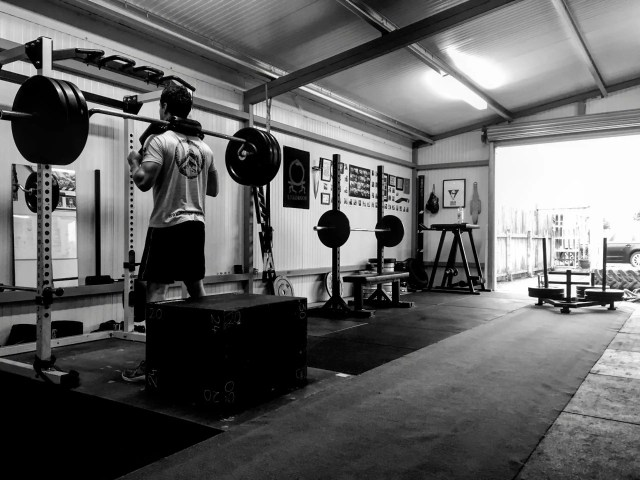 The Gym Box Squat