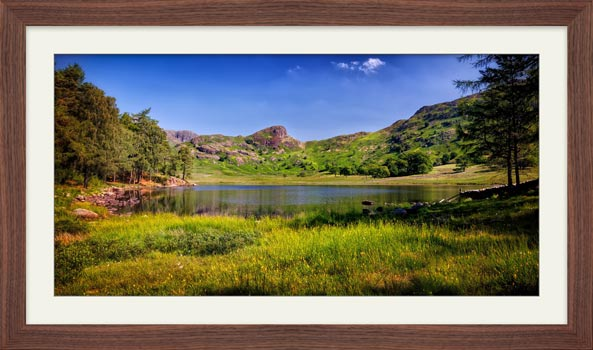 Blea Tarn Summer Meadow - Framed Print with Mount