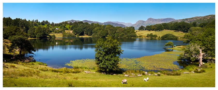 Loughrigg Tarn in Summer - Lake District Print