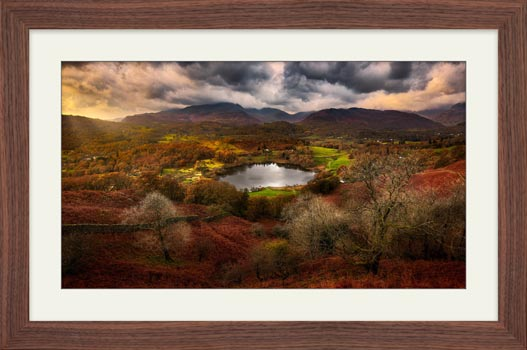 Golden Browns of Loughrigg - Framed Print