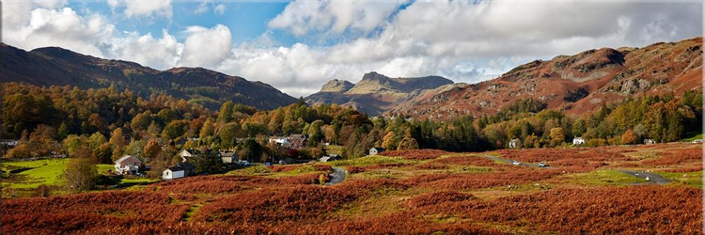 Elterwater Common - Canvas Print