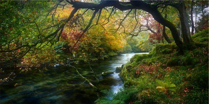 River Derwent in Autumn - Lake District Canvas