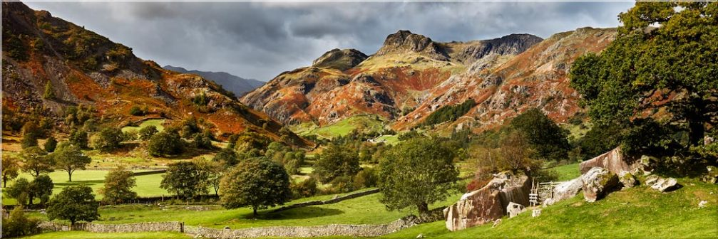 Summer Greens of Langdale - Canvas Print