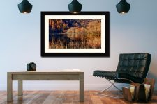 The Browns of Buttermere - Framed Print with Mount on Wall