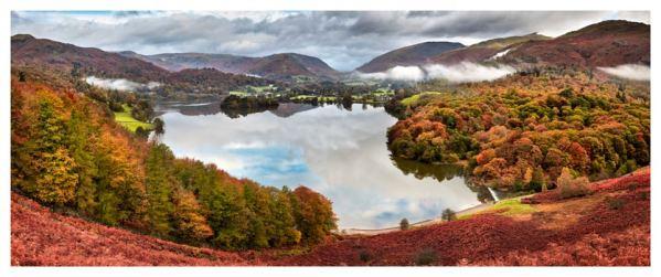 Trees of Grasmere - Lake District Print