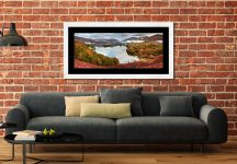 Trees of Grasmere - Framed Print with Mount on Wall