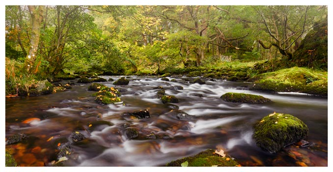Start of Autumn River Rothay - Lake District Print