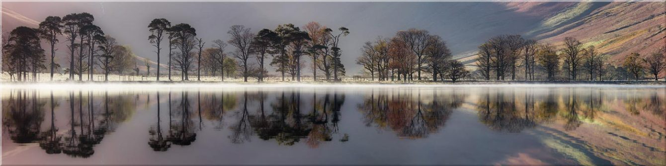 Buttermere Trees Silhouette - Canvas Prints