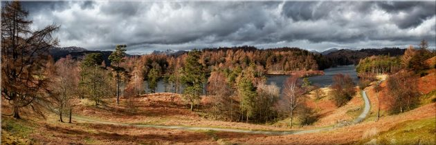 Tarn Hows Winter Colours - Canvas Print