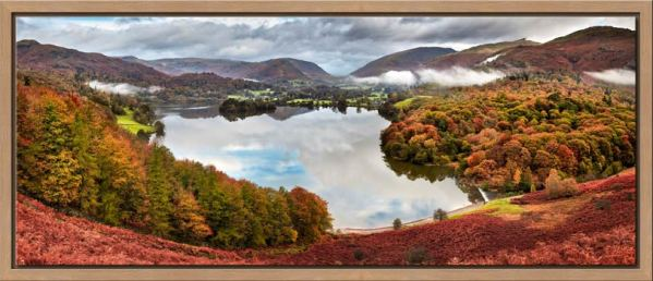 Trees of Grasmere - Modern Print