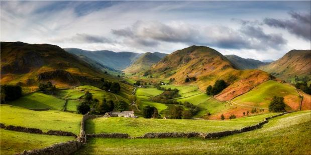 Green Fields of Martindale - Canvas Print
