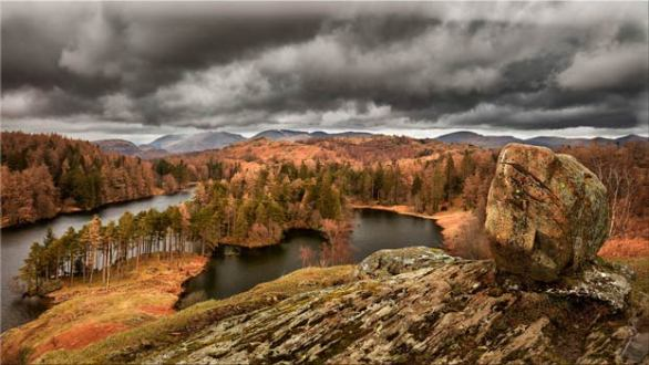 Grey Skies Over Tarn Hows - Canvas Print