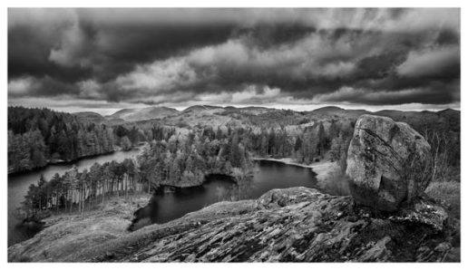 Grey Skies Over Tarn Hows - Black White Lake District Print