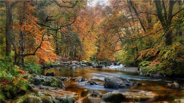River Esk in Autumn - Lake District Canvas