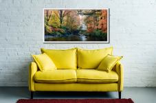 Golden Trees of Eskdale - White Maple floater frame with acrylic glazing on Wall