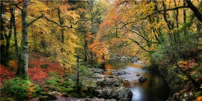 Autumn Woodlands of Eskdale - Canvas Print