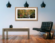 Autumn Woodlands of Eskdale - Framed Print with Mount on Wall