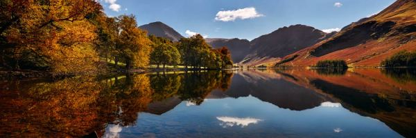 Buttermere Autumn Trees - UltraHD Print with Aluminium Backing