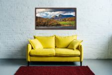 Golden Trees of Langdale - Walnut floater frame with acrylic glazing on Wall