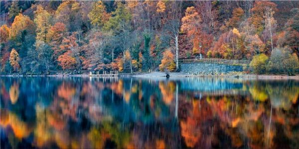 Autumn Ashness Derwent Water - Canvas Print