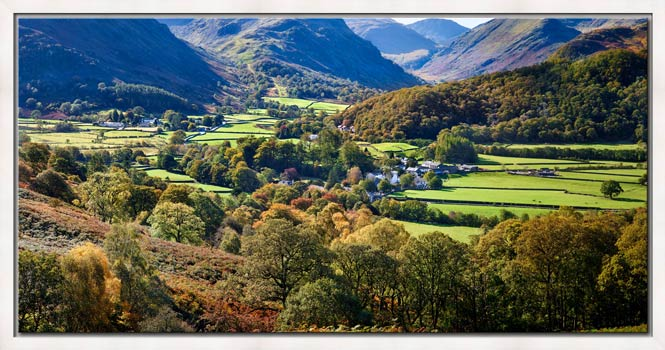 Trees of Borrowdale - Modern Print