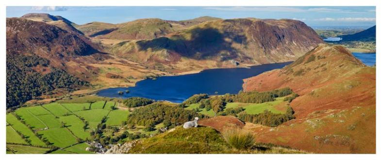 Contemplating Crummock Water - Lake District Print