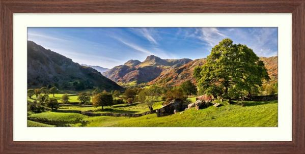 Summer in Great Langdale - Framed Print with Mount