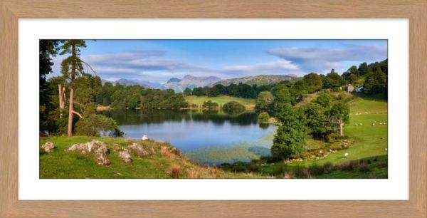 Summer Greens of Loughrigg Tarn - Framed Print with Mount
