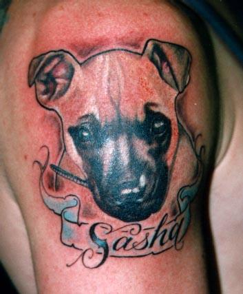 pet portrait tattoo Tauranga New Zealand