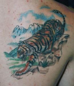 tiger tattoo Tauranga New Zealand