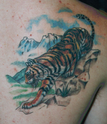 tiger tattoo Tauranga New Zealand