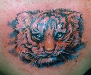 tiger cub tattoo Tauranga New Zealand
